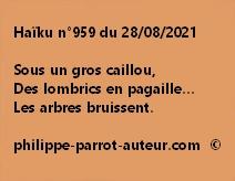 Haïku n°959 280821
