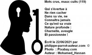 Mots crus, maux cuits 119