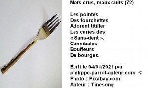 Mots crus, maux cuits 72