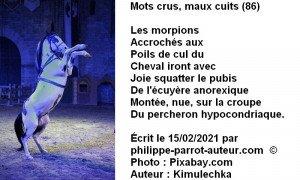 Mots crus, maux cuits 86