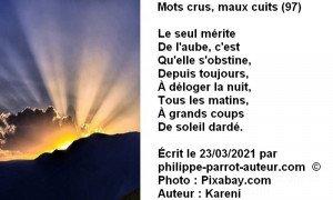 Mots crus, maux cuits 97