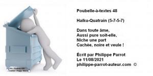Poubelle-à-textes 48