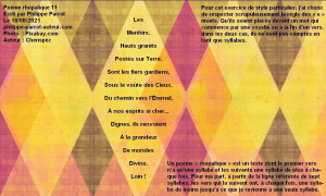 Rhopalique 11 180821